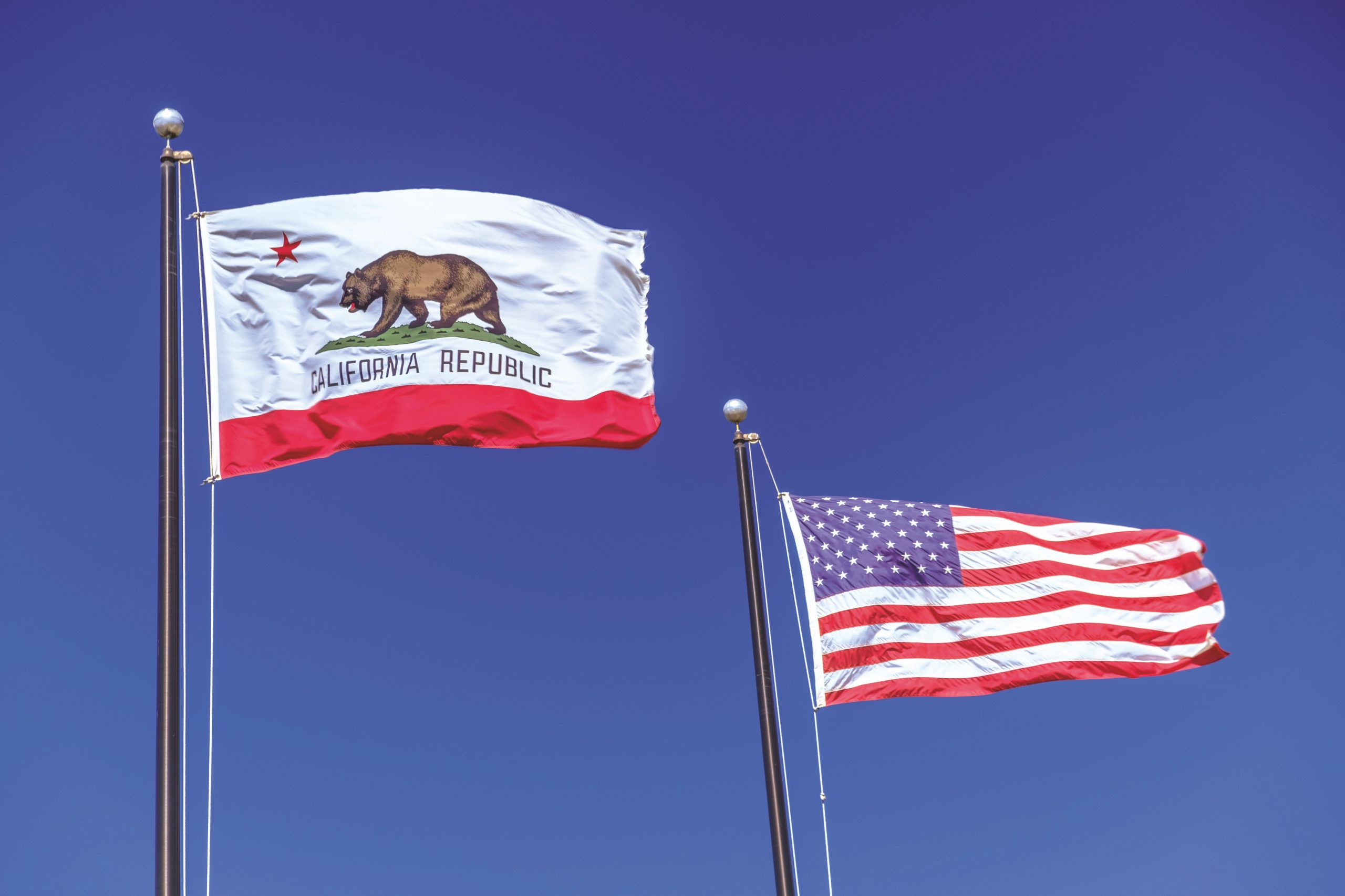 California Chapter Supports Assembly Bill 71